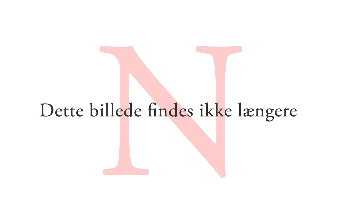 Når Noah støder på et svært ord, hjælper læsehundeføreren Caroline Amalie Falkenberg til.