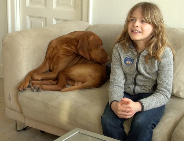 TV: Vil et klagenævn forhindre diskrimination af 9 årige Quintus?