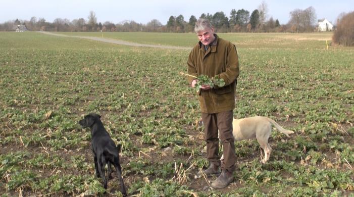TV: Økolog vil have byaffald ud på sine marker