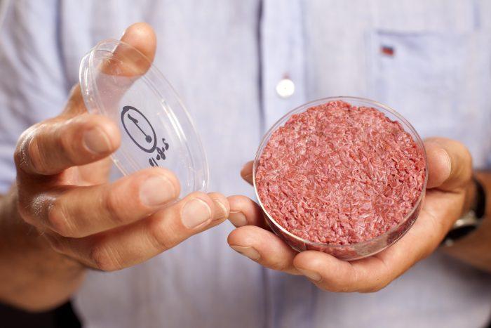 Forskere vil lave kød uden dyr