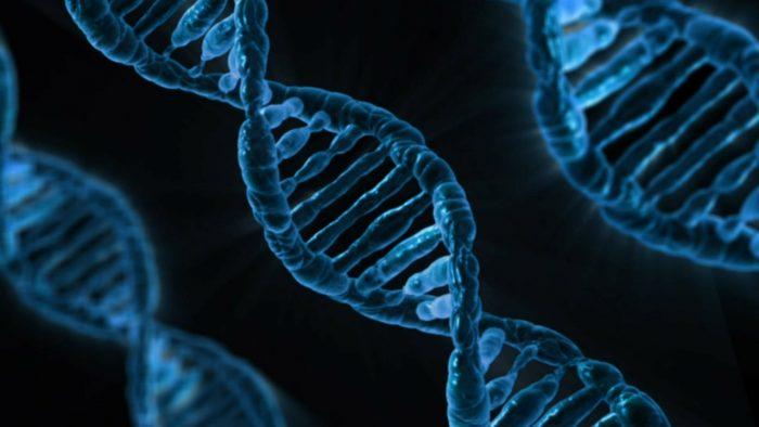 Ny forskning: Sen pubertet hos drenge ligger i generne