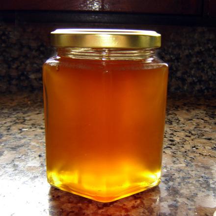 Mere dansk økologisk honning på vej