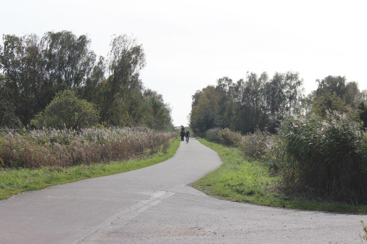Cykel_og_hest