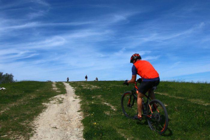 Amager: Cyklister og hesteryttere må selv løse konflikt