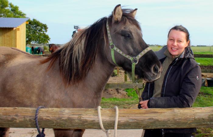 Amager: Cykeltrafik bringer hestepiger i livsfare