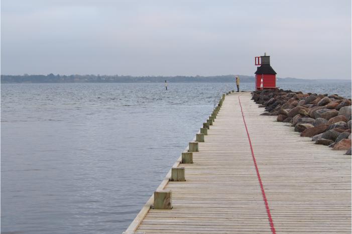 Vandsektor frygter, at effektivisering vil sætte miljøet over styr