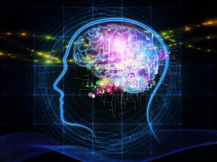 DTU-studerende: Lysterapi kan bremse udviklingen af Alzheimer