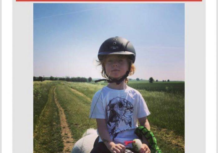 To-årige kan nu gå til ridning
