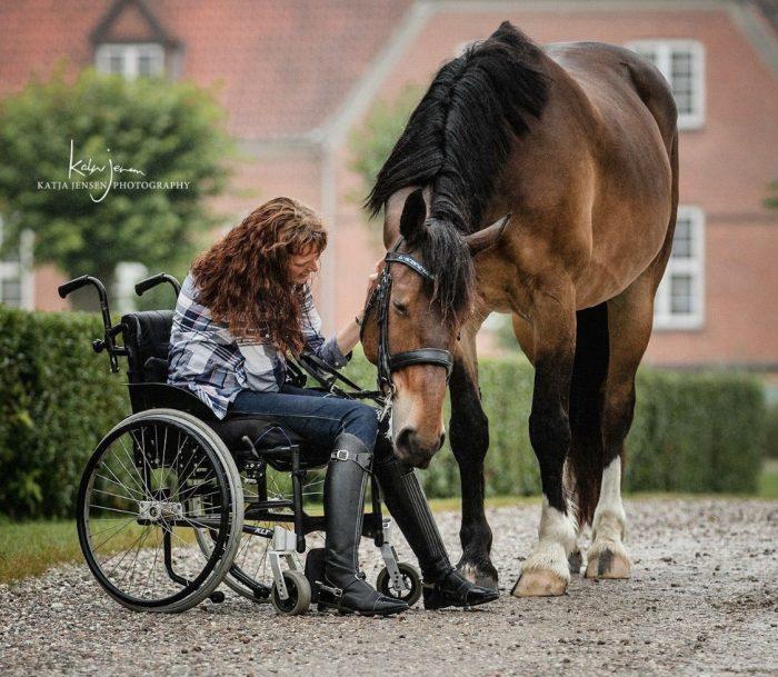 Fysioterapi på hesteryg er blevet mere populært