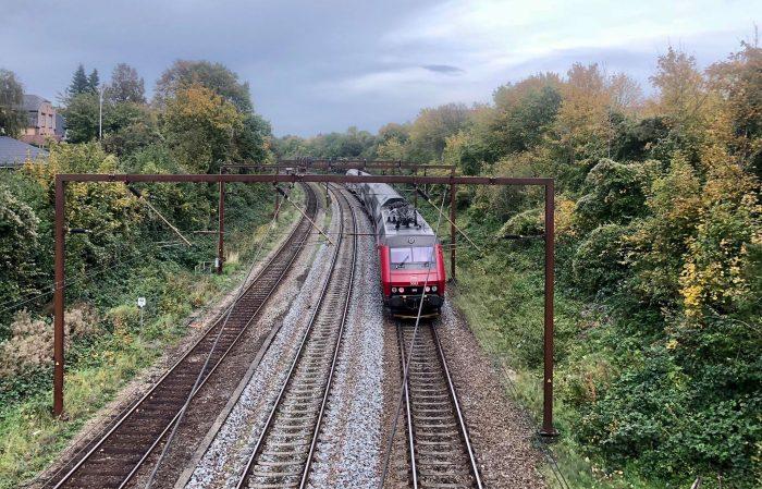 Banedanmark opgiver at fjerne efterårsblade fra togskinnerne