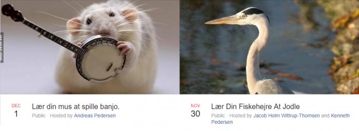 """Det vrimler med kæledyrskurser på Facebook: """"Lær din mus at spille banjo"""""""
