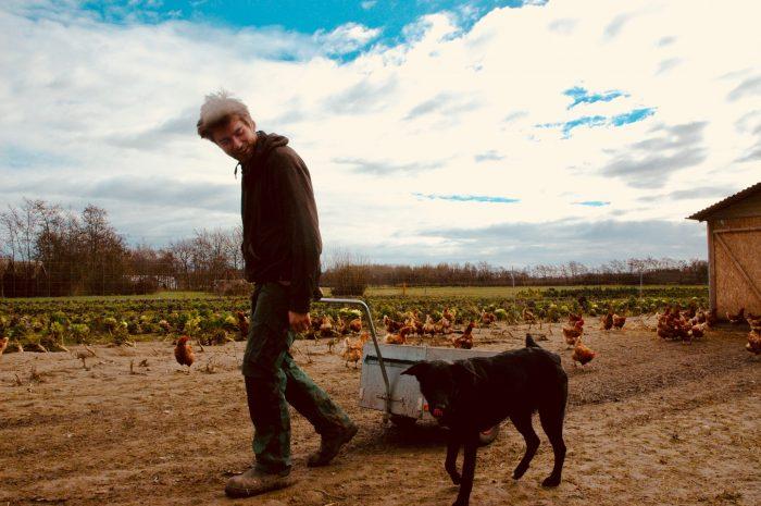 Radio: Ungt landmandspar går mod strømmen