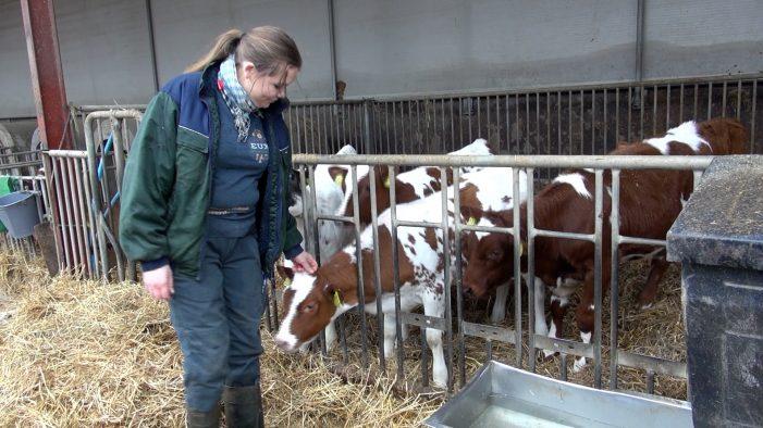 TV: Landbruget bliver indtaget af høje hæle og kunstige negle