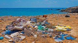 DTU-forskere vil udvikle plastikædende bakterier