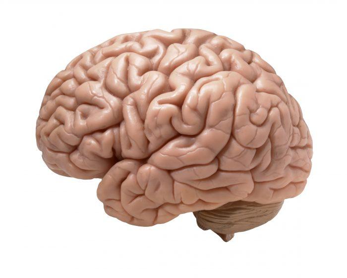 Ny forskning: Stresshormon kaster nyt lys over depression