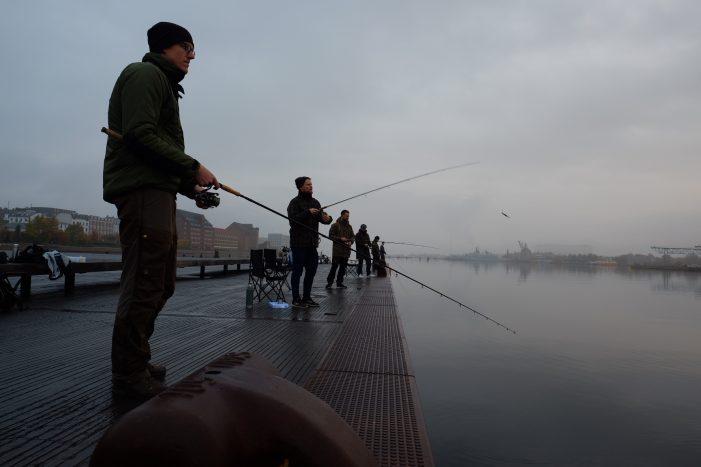Over 30.000 flere solgte fisketegn i år: Lystfiskeri er mere populært end nogensinde før